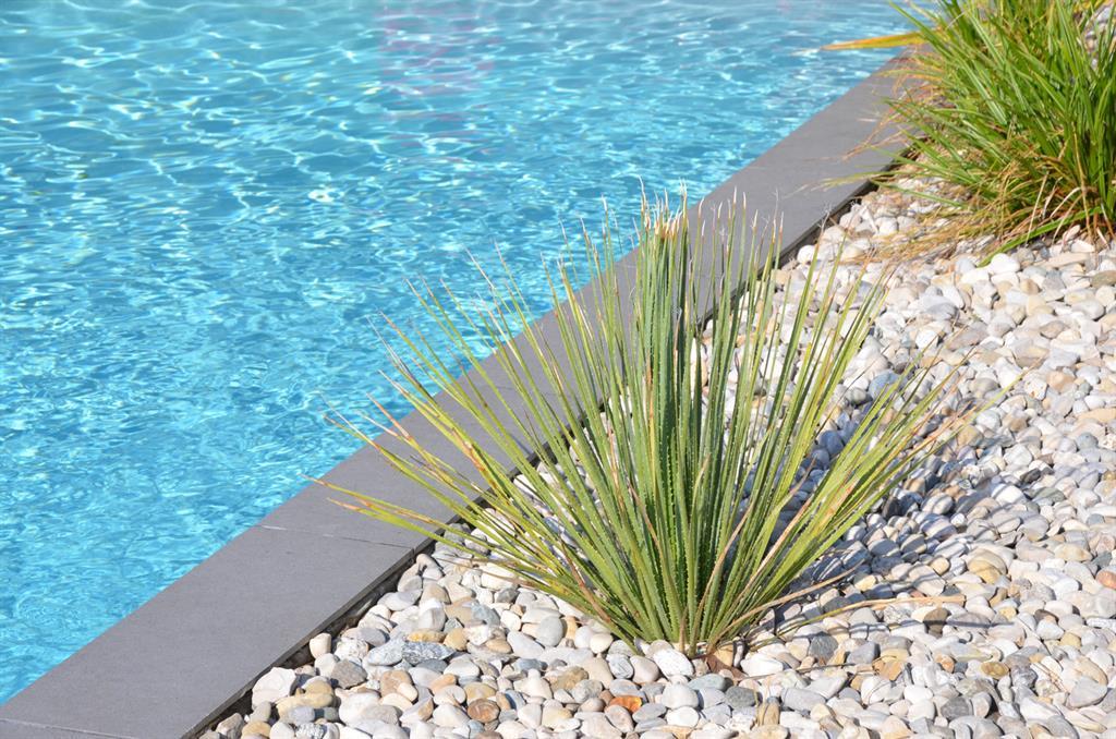 Bord de piscine paysag compagnie des createurs photo n - Amenagement bord de piscine ...