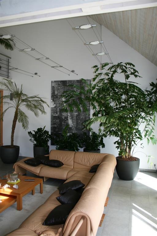 Salon Grande Hauteur Sous Plafond Lignavert Photo N 46