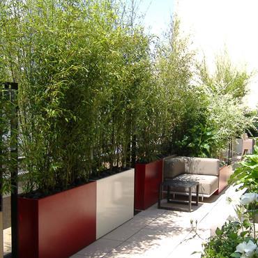 Terrasse aménagée avec bambous et canapés