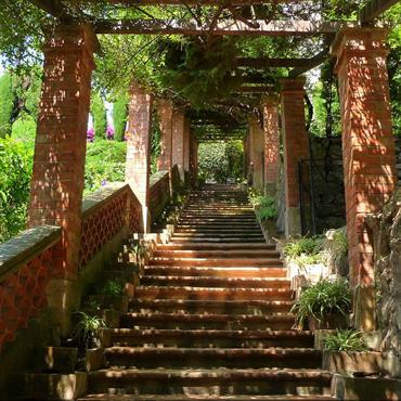 Escalier dans une allée ombragée cannes paysagiste
