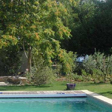 Jardin avec piscine, pelouse et massifs