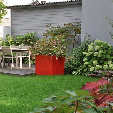 Jardin de ville paysagé avec terrasse en bois et surface engazonnée