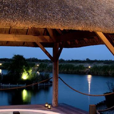 Ambiance tropicale, Terrasse et SPA. Petite îlot décoratif au milieu de l'étang