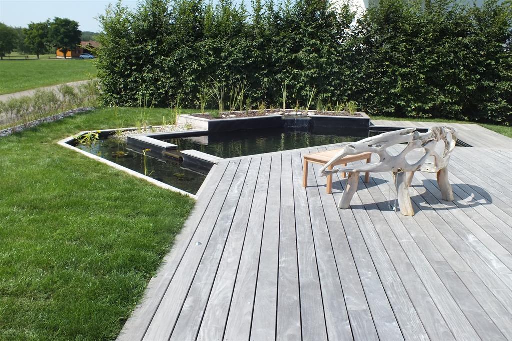 Baignade naturelle et terrasse bois bernard halbwachs for Piscine design contemporaine