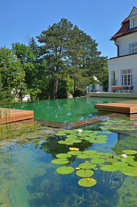 Maison Avec Piscine Naturelle Par Emmanuelle Lartilleux