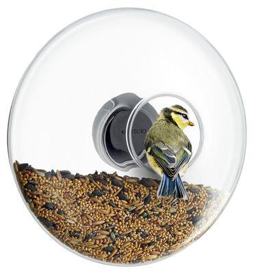 Mangeoire à oiseaux Large / Pour fenêtre - Ø 20 cm