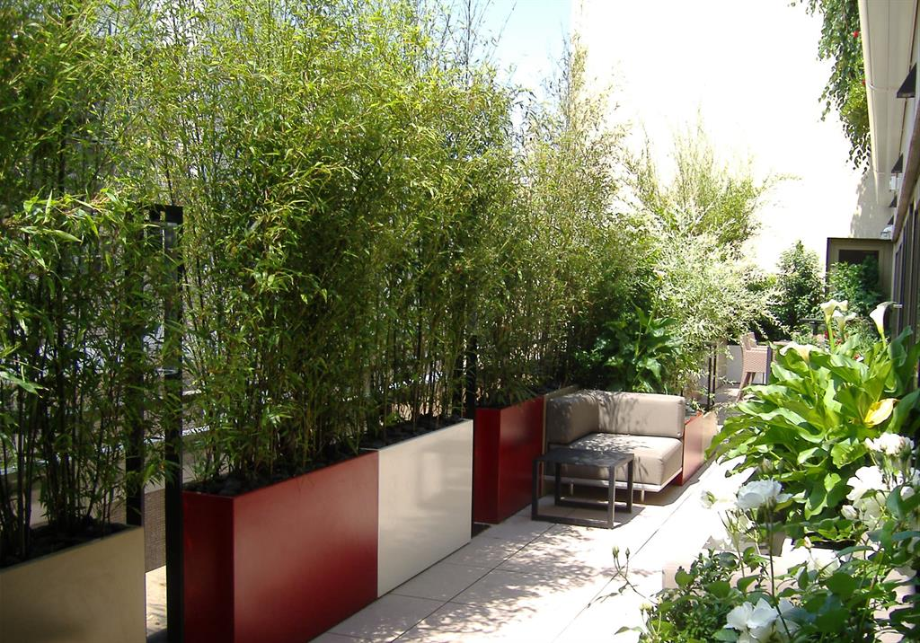 Terrasse Amenagee Avec Bambous Et Canapes Atelier So Green