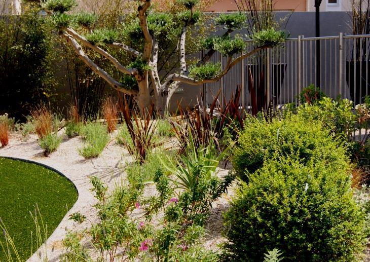 Plantations sur un jardin en pente