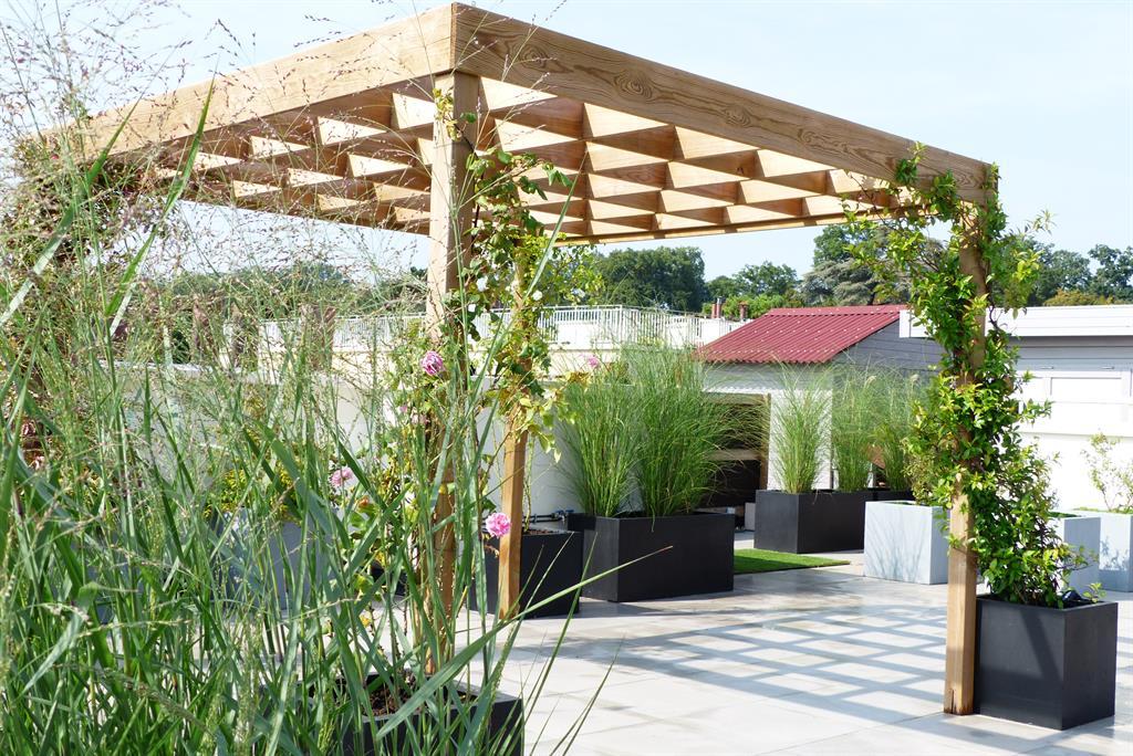 plante grimpante rapide pour pergola quelles plantes grimpantes pour votre pergola with plante. Black Bedroom Furniture Sets. Home Design Ideas