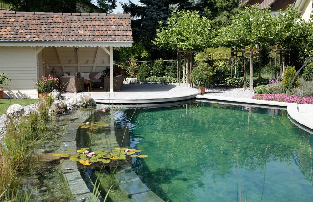piscine naturelle ronde qui utilise les propri t s filtrantes des plantes aquatiques. Black Bedroom Furniture Sets. Home Design Ideas