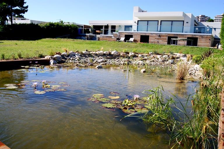 Vue du jardin d'une maison contemporaine avec piscine naturelle