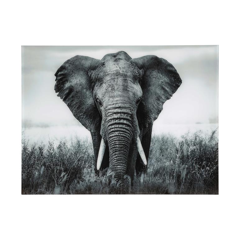 Tableau Elephant En Plexi 161 X 123 Cm Machaka Maisons Du Monde