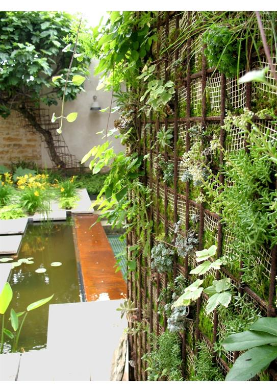 Jardin moderne paysagé mélangeant les éléments végétaux