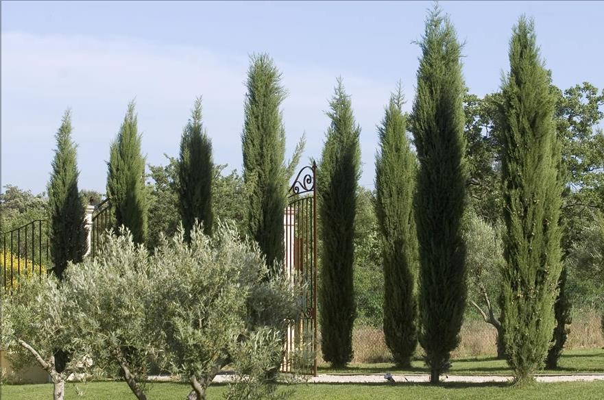Maisons proven ales for Portail entree propriete