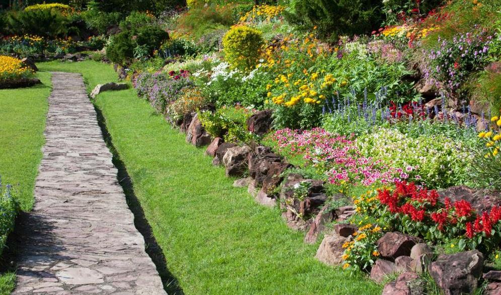 Jardin avec all e en pierres et fleurs corse paysage - Amenagement jardin avec pierres ...