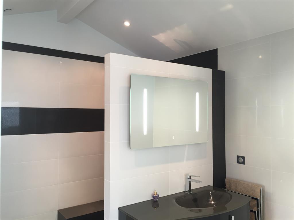 Image Salle de bain monochrome avec miroir éclairage intégré COMPAGNIE DES CREATEURS