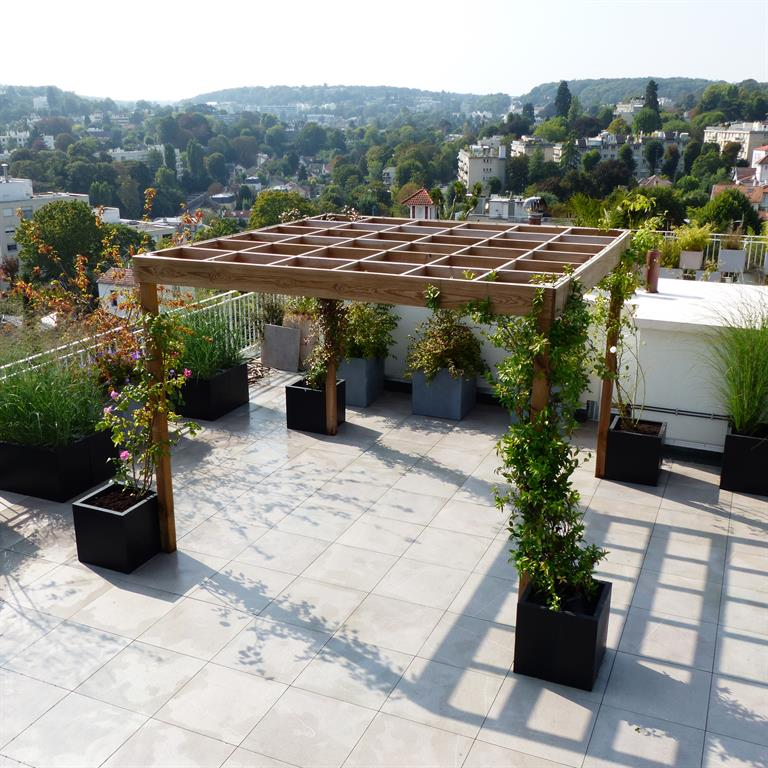 treille en bois avec plantes grimpantes sur une terrasse. Black Bedroom Furniture Sets. Home Design Ideas
