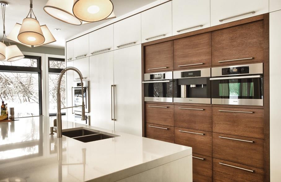 Cuisine contemporaine avec panneaux de bois et panneaux - Image de cuisine contemporaine ...