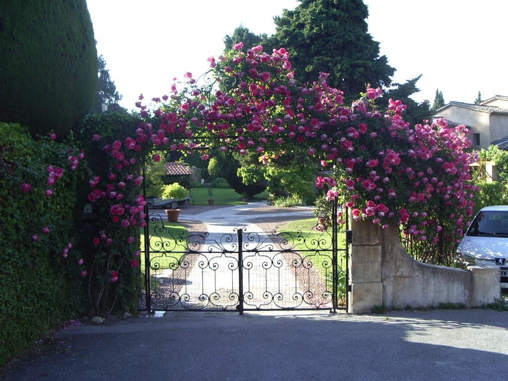 Une entrée couronnée de fleurs L\'Art du Jardin photo n°54
