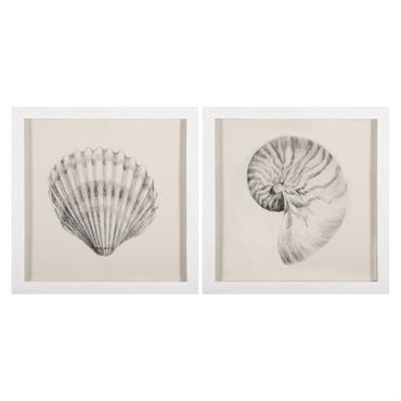 SOUVENIRS DE VOYAGE L'ensemble de 2 cadres en bois blancs imprimés coquillage ALOHA vous rappellera vos dernières vacances au bord de la mer. UN AIR MARIN Avec leurs matières naturelles ...