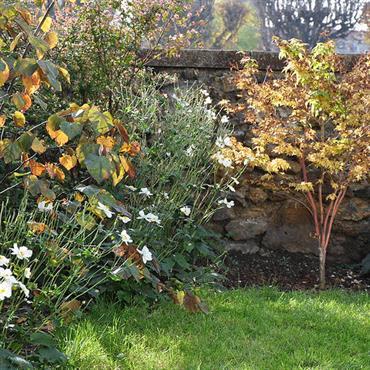 L'approche de l'hiver est un temps propice au jardinage. C'est même la période idéale pour s'activer à tout l'éventail des ... Domozoom