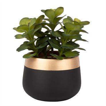 Succulente artificielle et pot en céramique noire et dorée