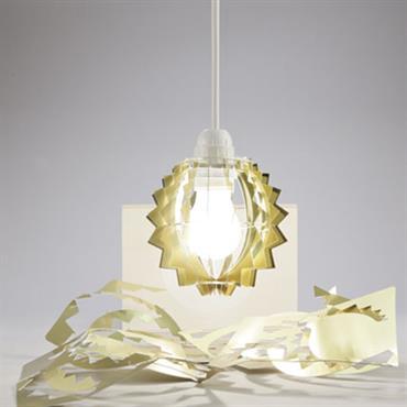 La Designerbox #19 : 'Drago light', la lampe DIY imaginée par Maurizio Galante pour Designerbox. Disponible ici : http://bit.ly/1GJSJe3   Domozoom