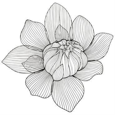 Déco murale fleur filaire noire 83x81