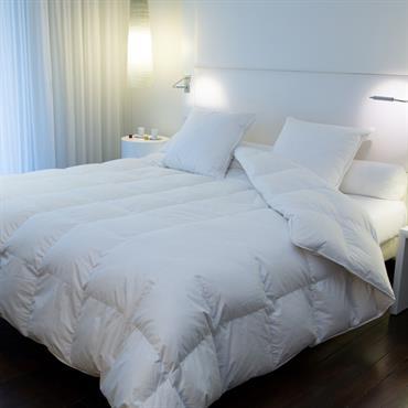 Modèle En Duvet Blanc Neuf Oie Ou Canad. Belle Literie Excellence