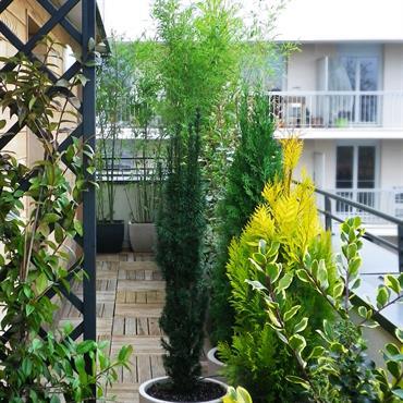 Été comme hiver, ce balcon filant est à l'abri des regards indiscrets grâce à une sélection de végétaux à feuillages ... Domozoom