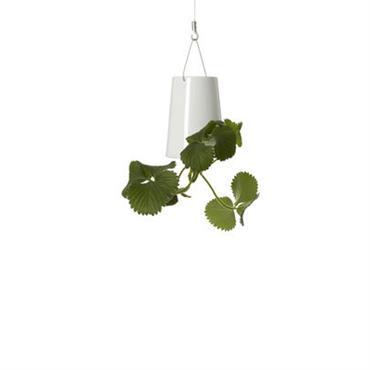 Jardinière Boskke Design Blanc Métal Jardinière : H 12 cm x Ø 9 cm - Anse : H 10 cm - Hauteur totale (anse et jardinière) : 22 cm Un ...
