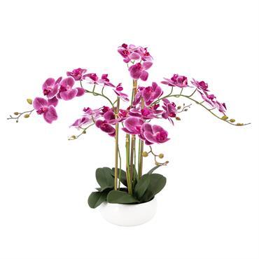 Orchidée artificielle prune 6 branches coupe céramique 55cm