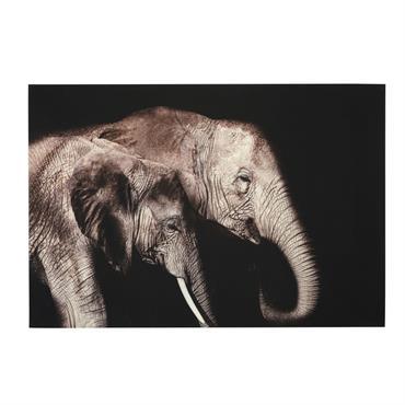 Tableau photo plexiglas imprimé éléphants 150x100