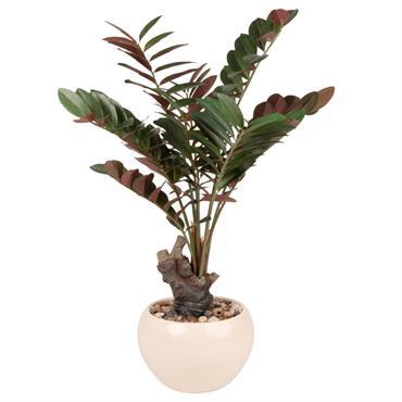 Plante tropicale artificielle pot blanc
