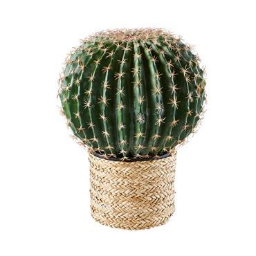 Déco de jardin cactus en jonc de mer H46