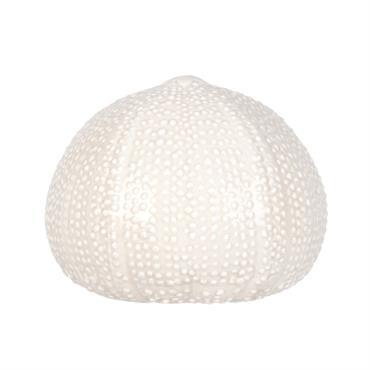 Statuette coquillage en dolomite blanc H10