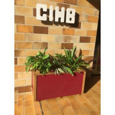 Bac à fleurs rectangulaire CIHB