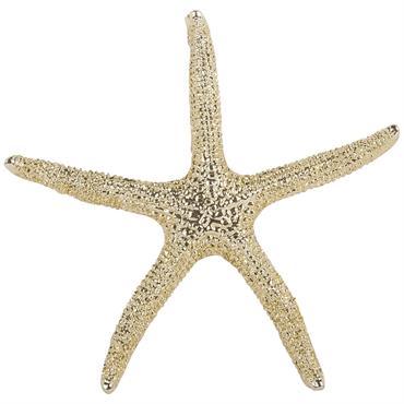 Statuette étoile de mer L11
