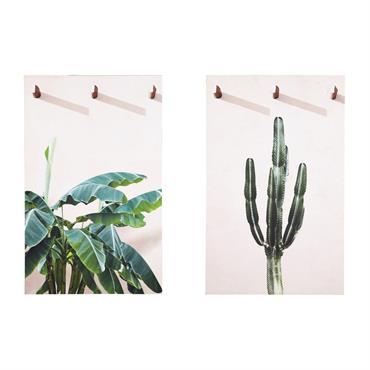 2 toiles imprimées plantes 80x130