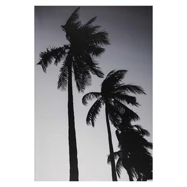 Toile imprimée palmier noir et blanc 95x140cm FORTALEZA