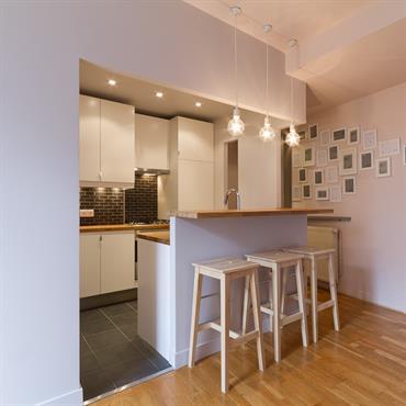 Réhabilitation d'un appartement, 50m², Paris. Conception, maitrise d'ouvrage.  Domozoom