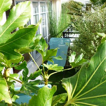 Terrasse sur 2 espaces, 2 ambiances...  Domozoom