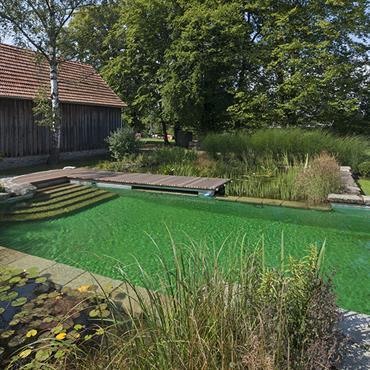 Esprit nature et campagne. La piscine écologique s'invite avec le plus grand naturel dans un environnement champêtre.