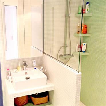 Optimisation d'une toute petite salle de bain parisienne