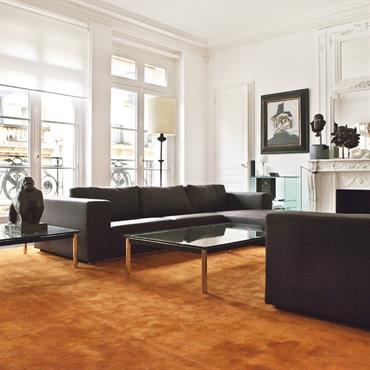 Grand salon élégant avec canapé noir