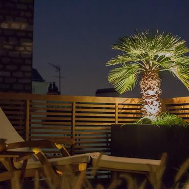 Touche d'exotisme sur ce balcon avec un petit palmier