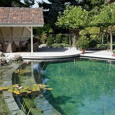 Piscine naturelle ronde qui utilise les propriétés filtrantes des plantes aquatiques pour purifier l'eau.