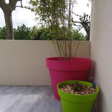 Des pots aux couleurs acidulés