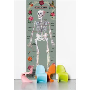 Papier peint Le squelette humain / 1 lé - Domestic multicolore en papier