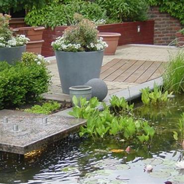 Jardin avec bassin